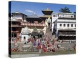 Hindu Festival  Pashupatinath Temple  Kathmandu  Nepal