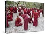 Monks Learning Session  with Masters and Students  Sera Monastery  Tibet  China