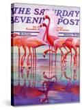 """Pink Flamingos "" Saturday Evening Post Cover  January 29  1938"