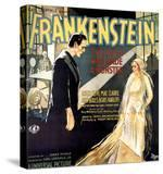 Frankenstein  Boris Karloff  Mae Clarke  1931
