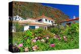 Garden and Holiday Homes in Jardim do Mar  Madeira Island  Portugal