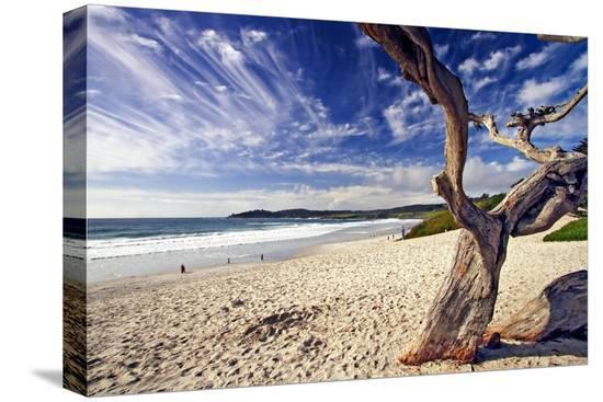 george-oze-carmel-beach-california
