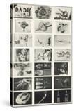 Full Undivided Sheet of the First Series of 21 Surrealist Picture Postcards  1937