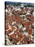 City Buildings From Top of Munster  Bern  Switzerland