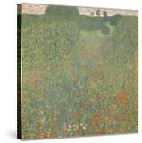 Meadow of Poppies  1907