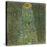 The Sunflower  1905