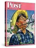 """Apple Blossoms "" Saturday Evening Post Cover  May 6  1944"