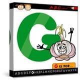 Letter G With Garlic Cartoon Illustration