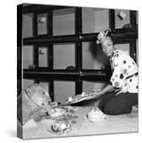 Eartha Kitt - 1954