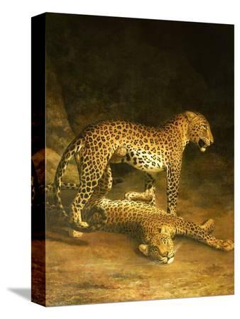 jacques-laurent-agasse-two-leopards-lying-in-the-exeter-exchange-1808