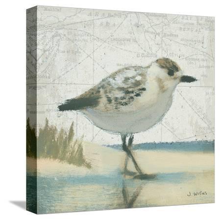 james-wiens-beach-bird-i