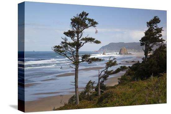 jamie-judy-wild-cannon-beach-and-haystack-rock-oregon-usa
