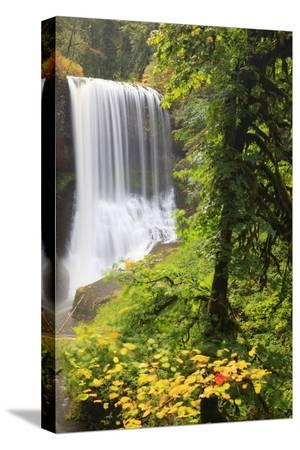 jamie-judy-wild-middle-north-falls-silver-falls-state-park-oregon-usa
