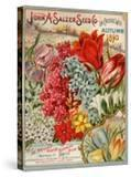 John A Salzer Seed Co Autumn 1895