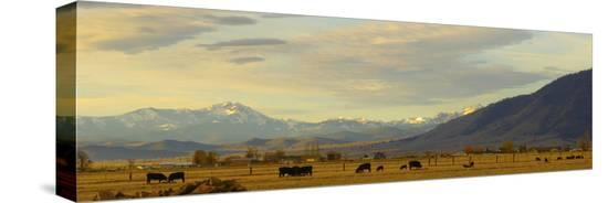 john-alves-late-afternoon-light-bathes-a-majestic-view-of-the-carson-valley-in-nevada