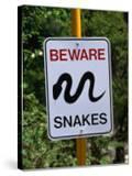 Snake Sign at Museum of Modern Art in Heidi  Melbourne  Australia