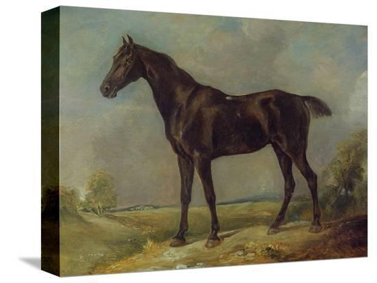 john-constable-golding-constable-s-black-riding-horse-c-1805-10-oil-on-panel