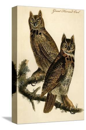 john-james-audubon-great-horned-owl
