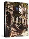 Brownstone Buildings in Harlem  Manhattan  New York City  USA