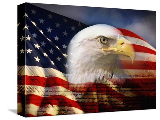 joseph-sohm-bald-eagle-head-and-american-flag