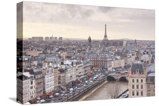 julian-elliott-the-city-of-paris-as-seen-from-notre-dame-cathedral-paris-france-europe