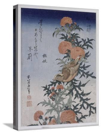 katsushika-hokusai-bec-croise-et-chardon