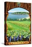 Avila Beach  California - Vineyard and Ocean Scene
