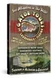Ft Lauderdale  Florida - Alligator Tours Vintage Sign