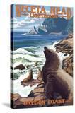 Heceta Head Lighthouse - Sea Lions