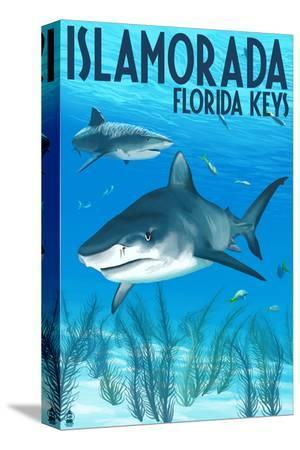 lantern-press-islamorada-florida-keys-tiger-shark