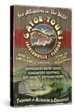 Jacksonville  Florida - Alligator Tours Vintage Sign