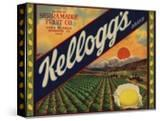 Kelloggs Brand - Casa Blanca  California - Citrus Crate Label