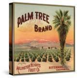 Palm Tree Brand - Riverside  California - Citrus Crate Label