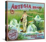 Riverside  California  Artesia Brand Citrus Label