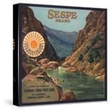 Sespe Brand - Fillmore  California - Citrus Crate Label