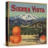 Sierra Vista Brand - Riverside  California - Citrus Crate Label