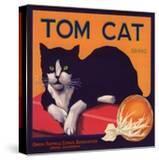 Tom Cat Brand - Orosi  California - Citrus Crate Label
