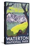 Waterton National Park  Canada - Beaver Family