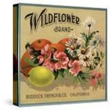 Wildflower Brand - Ruddock  California - Citrus Crate Label