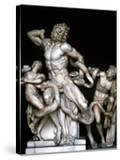 Laocoon and His Sons Sculpture 25BC