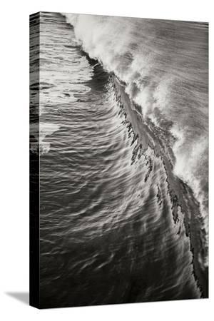 lee-peterson-wave-3