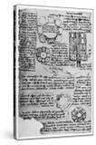 Sketch for Romorantin Castle  1517-1518