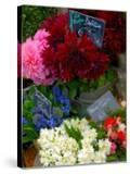 Florist in Ile St Louis  Paris  France