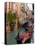 Gondolas Moored along Grand Canal  Venice  Italy