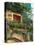 Grape Arbor and Flowers  Lake Garda  Malcesine  Italy