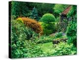 Large Informal Country Garden