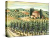 Tuscan Villa and Vineyard