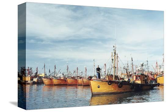 mark-chivers-fishing-fleet-in-port-mar-del-plata-argentina-south-america