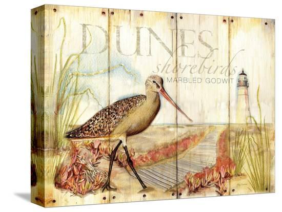 mary-escobedo-dunes-shorebird