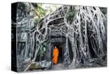 Cambodia  Siem Reap  Angkor Wat Complex Buddhist Monk Inside Ta Prohm Temple (Mr)